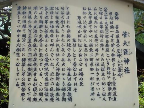 20110425-A (22).JPG