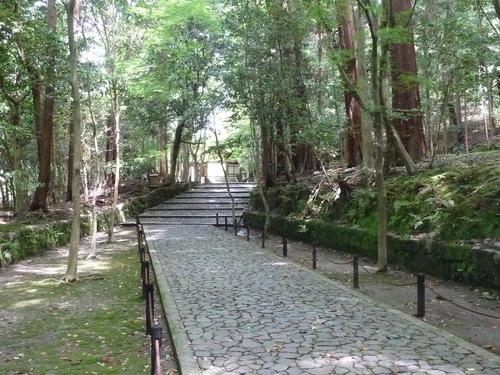 2011525知恩院から銀閣寺 (26).JPG