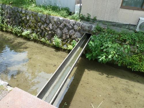2011525知恩院から銀閣寺 (37).JPG