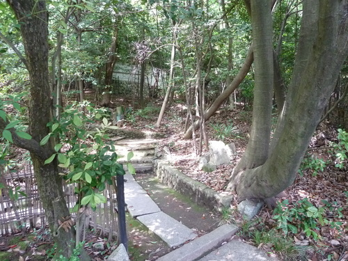 2011525知恩院から銀閣寺 (54).JPG