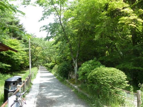 2011525知恩院から銀閣寺 (17).JPG