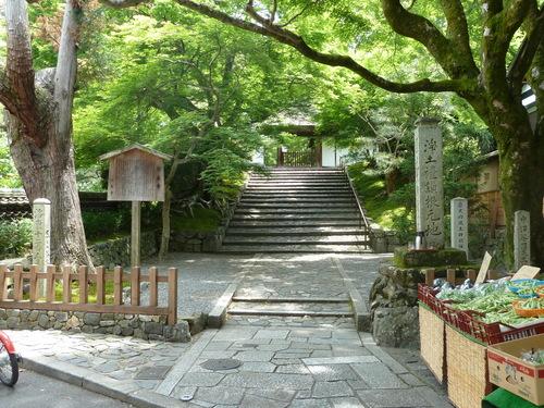 2011525知恩院から銀閣寺 (24).JPG
