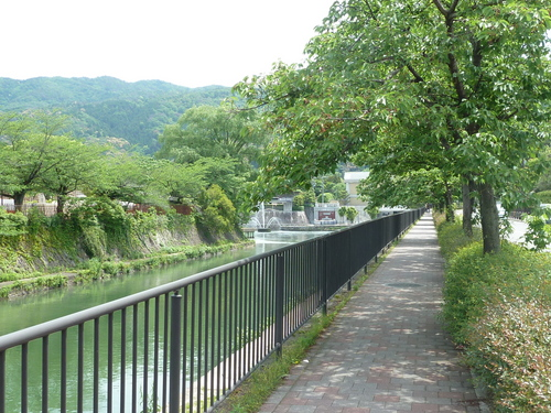 2011525知恩院から銀閣寺 (8).JPG
