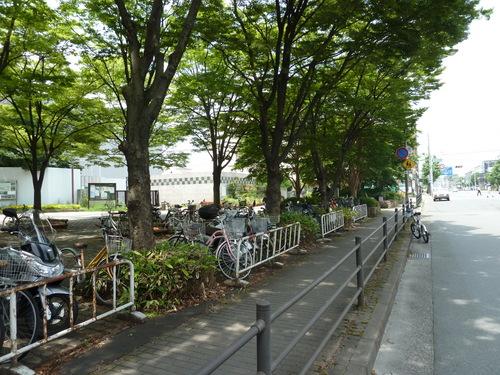 20110606東寺 (33).JPG