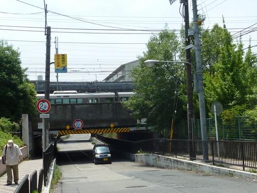 20110606東寺 (16).JPG