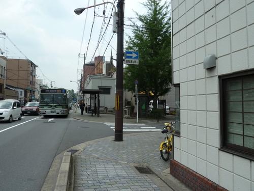 2011604 (17).JPG