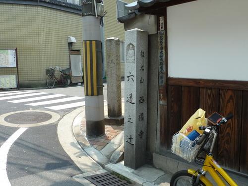2011604 (51).JPG
