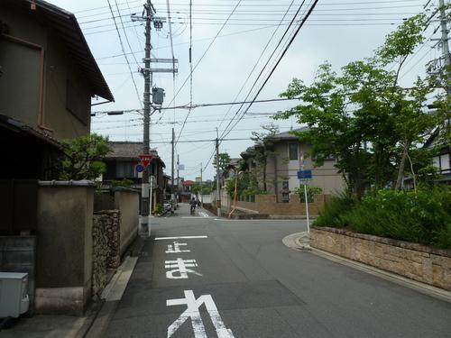 2011604 (10).JPG