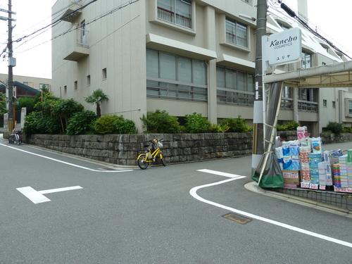 2011604 (55).JPG