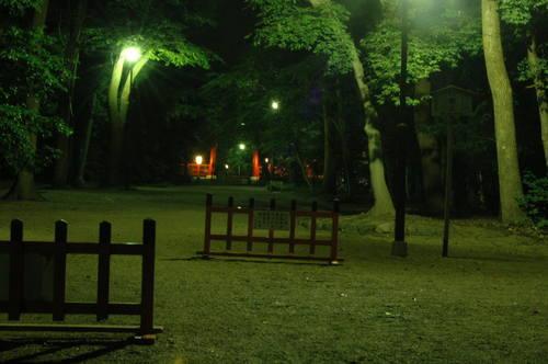 110702 下賀茂神社 (23).JPG