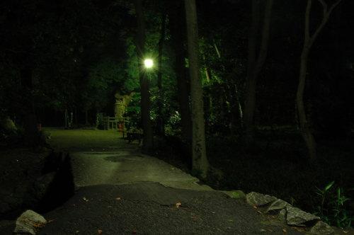 110702 下賀茂神社 (27).JPG