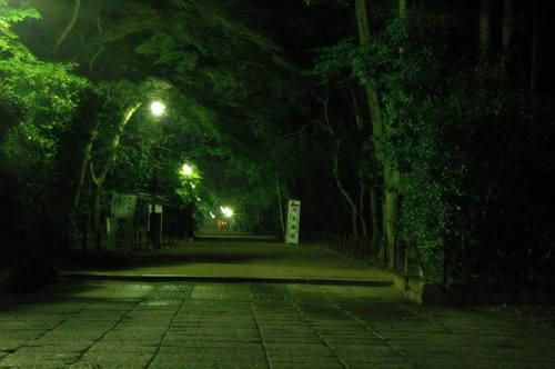 110702 下賀茂神社 (35).JPG