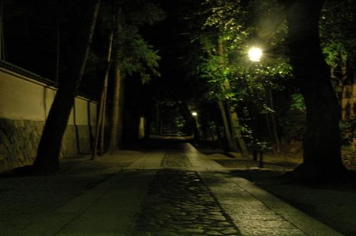 110702大徳寺 (16).JPG
