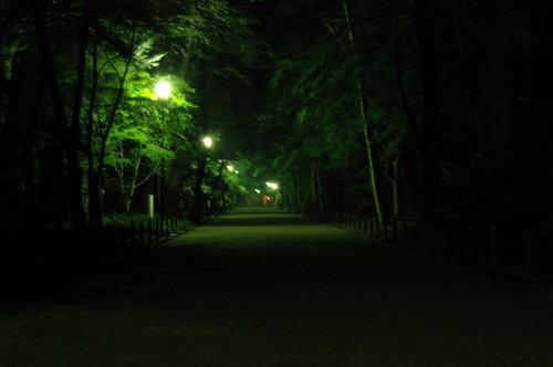 110702 下賀茂神社 (32).JPG