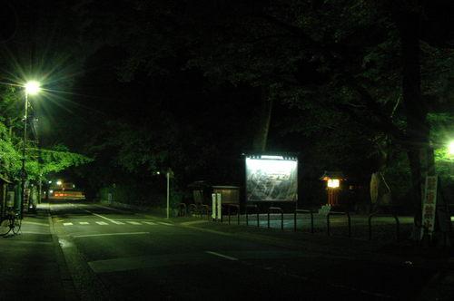 110702 下賀茂神社 (39).JPG
