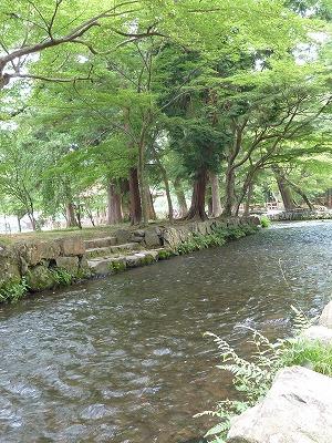 20110630上賀茂方面 (27).jpg