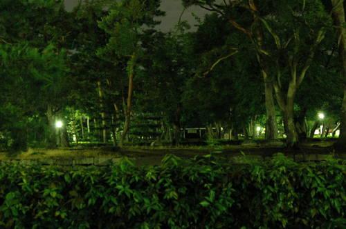 20110709上賀茂神社 相国寺 (92).JPG