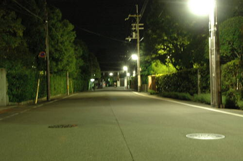 20110709上賀茂神社 相国寺 (54).JPG