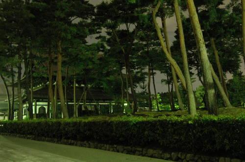 20110709上賀茂神社 相国寺 (80).JPG
