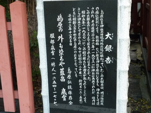 大銀杏石碑.JPG
