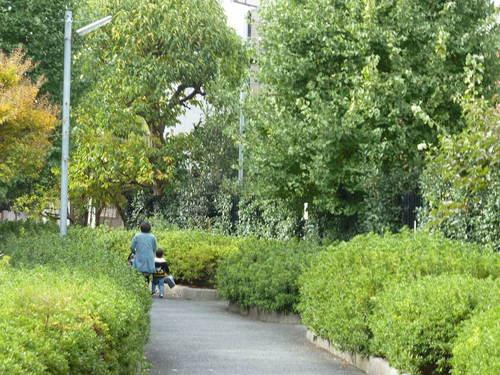 遊歩道2.JPG