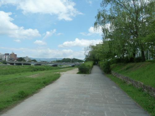 鴨川29.JPG