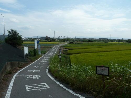 嵐山 きぬかけ5.JPG
