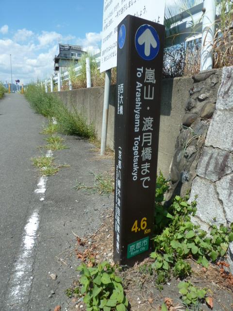 桂川サイクリングロード14.JPG