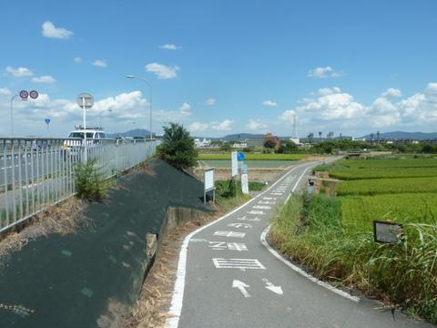桂川サイクリングロード18.JPG