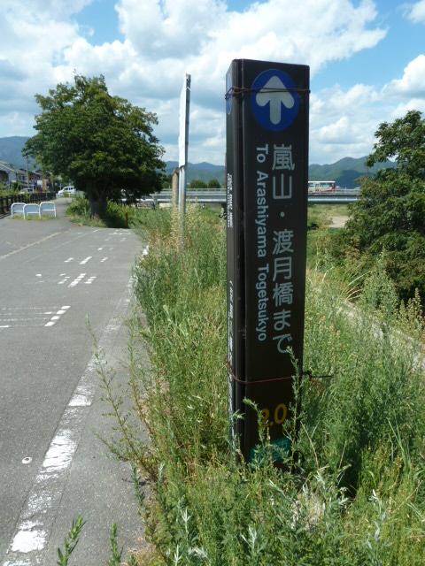 桂川サイクリングロード24.JPG