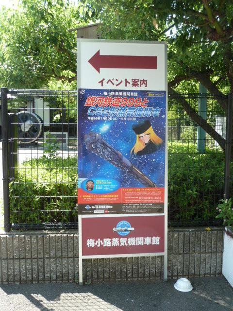 桂川サイクリングロード5.JPG