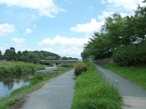 鴨川33.JPG