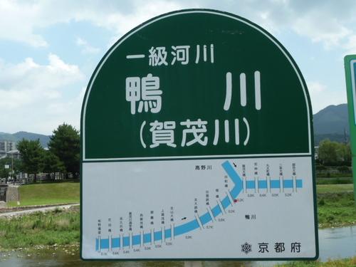 鴨川37.JPG