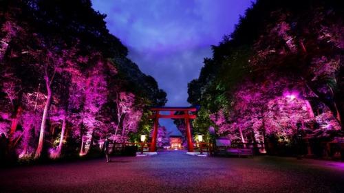 下賀茂神社.jpgのサムネール画像