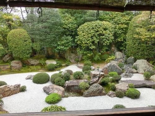 退蔵院 庭園.jpg