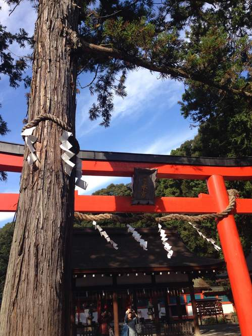 吉田神社5.JPG