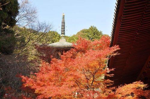 神護寺.jpg