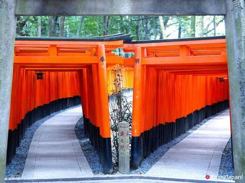 伏見稲荷2.jpgのサムネール画像