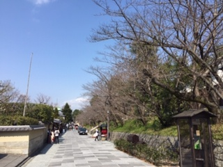 ねねの道9.jpgのサムネール画像