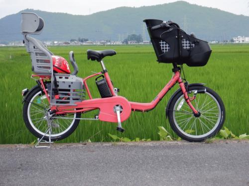 DSCF0014.JPGのサムネール画像のサムネール画像