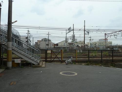 20110526 (17).JPG